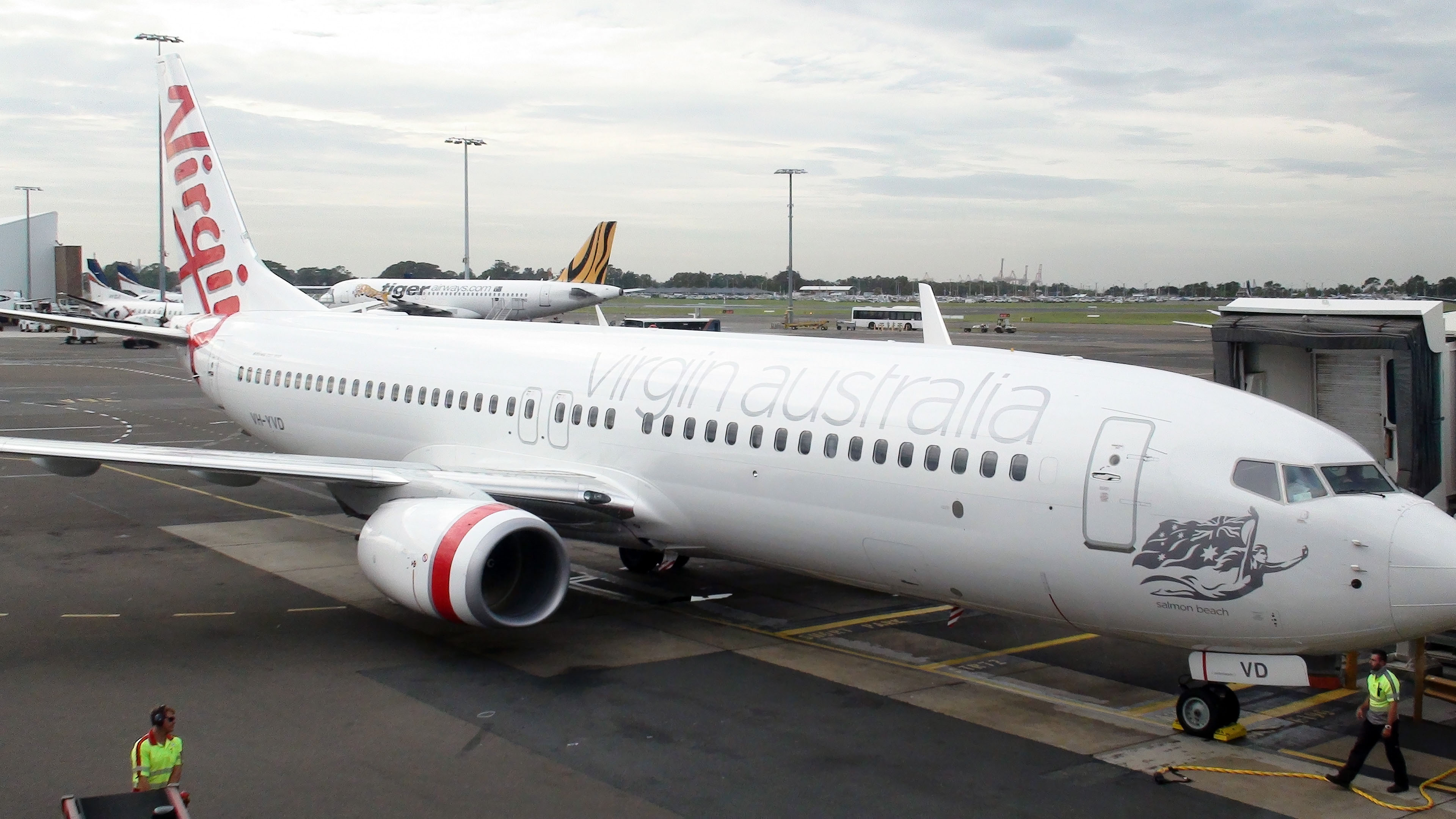 Virgin Australia passenger says dog was left sitting in 93-degree weather while luggage loaded
