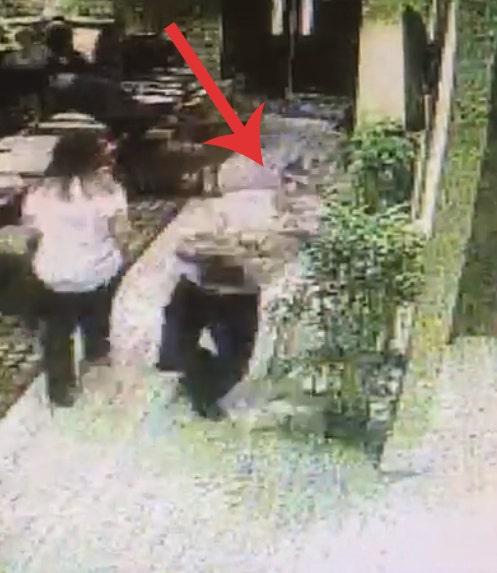 Σερβιτόρος πέσει, ενώ κρατάει τέσσερα γεύματα, μην του πέσει ένα ενιαίο πιάτο