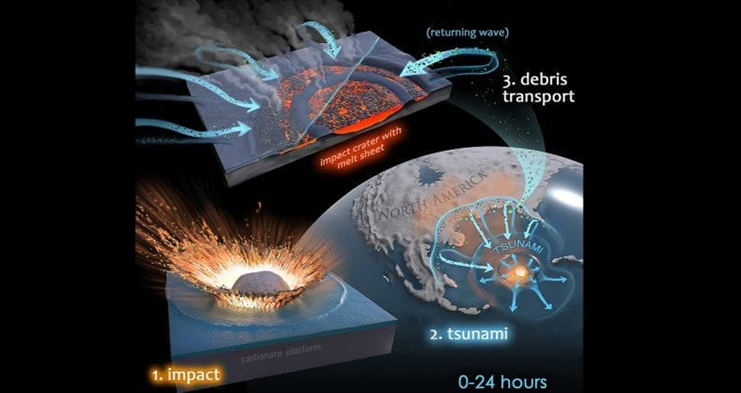 巨大小惑星爆発する殺害の恐竜の恩恵を受け菌の研究という