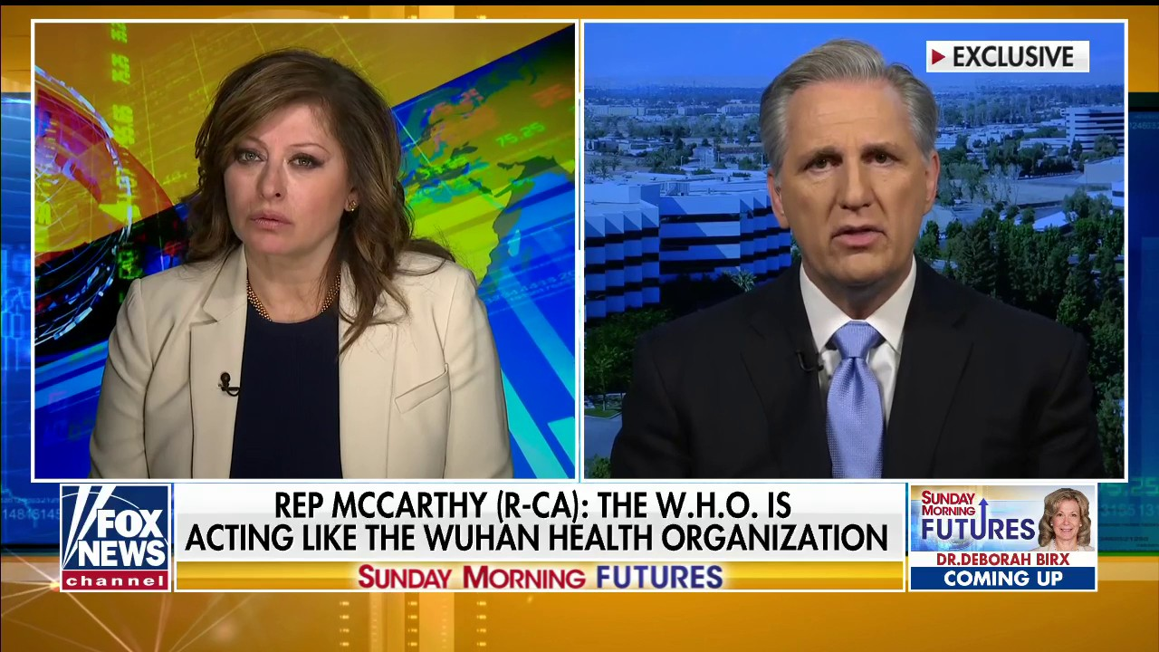 Westlake Legal Group McCarthy-use Kevin McCarthy: WHO acting like 'Wuhan Health Organization' during coronavirus Talia Kaplan fox-news/world/world-health-organization fox-news/shows/sunday-morning-futures fox-news/politics/house-of-representatives/legislation fox-news/politics/house-of-representatives fox-news/person/nancy-pelosi fox-news/person/kevin-mccarthy fox-news/media/fox-news-flash fox-news/health/infectious-disease/coronavirus fox news fnc/media fnc article 12c9457a-5037-5171-a5d4-c7af321ff23b
