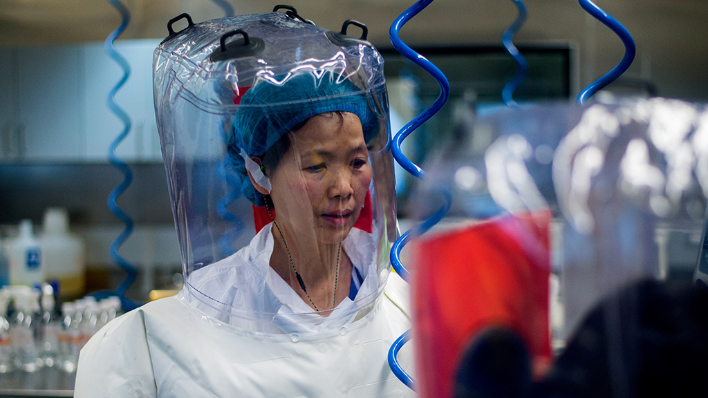 China's top virologist warns Covid-19 is just tip of the iceberg