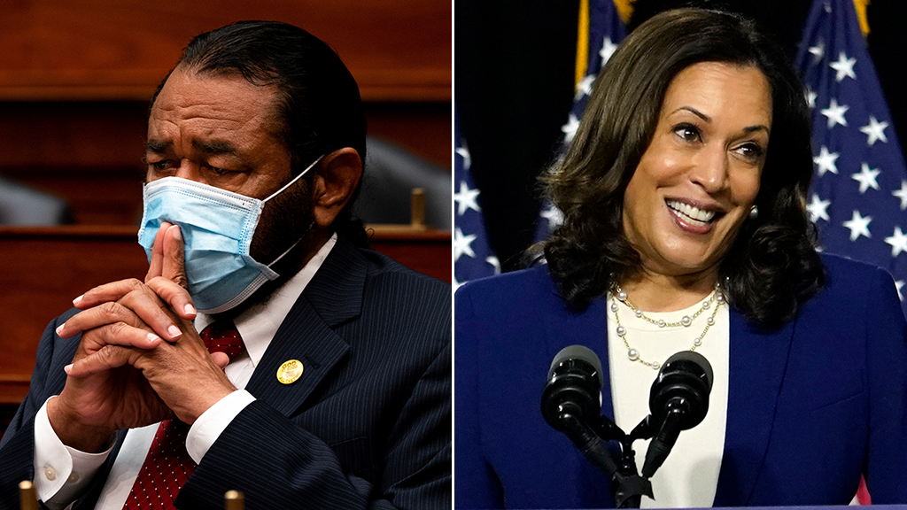 Rep. Al Green insists Biden made 'final decision' on Harris pick, calls ticket 'very special for all of us'