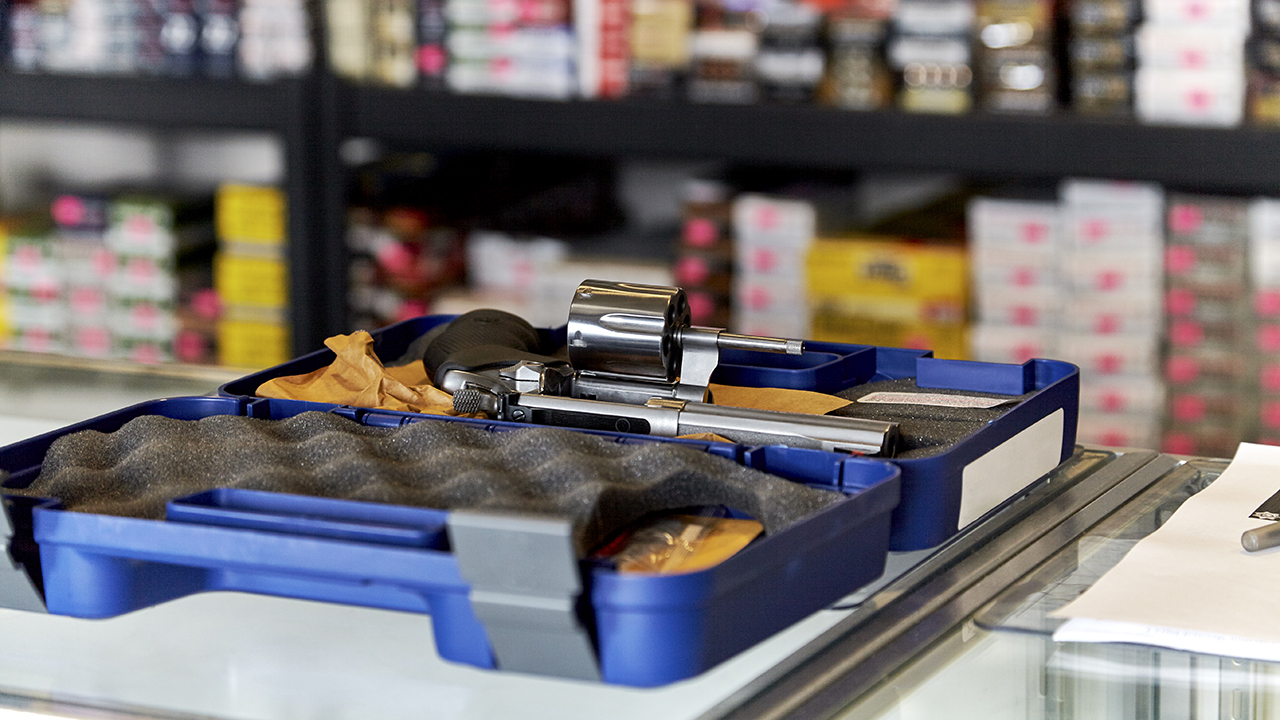 New York gun background checks spiked 121 percent in June: report - fox