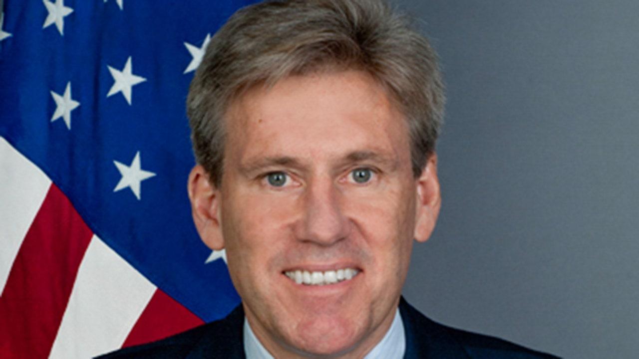 Ambassador christopher stevens.'