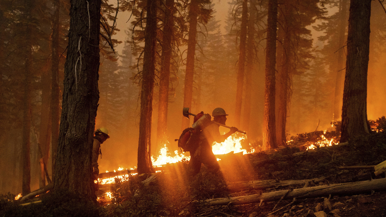 Firefighter dies in California's El Dorado wildfire sparked by gender-reveal party