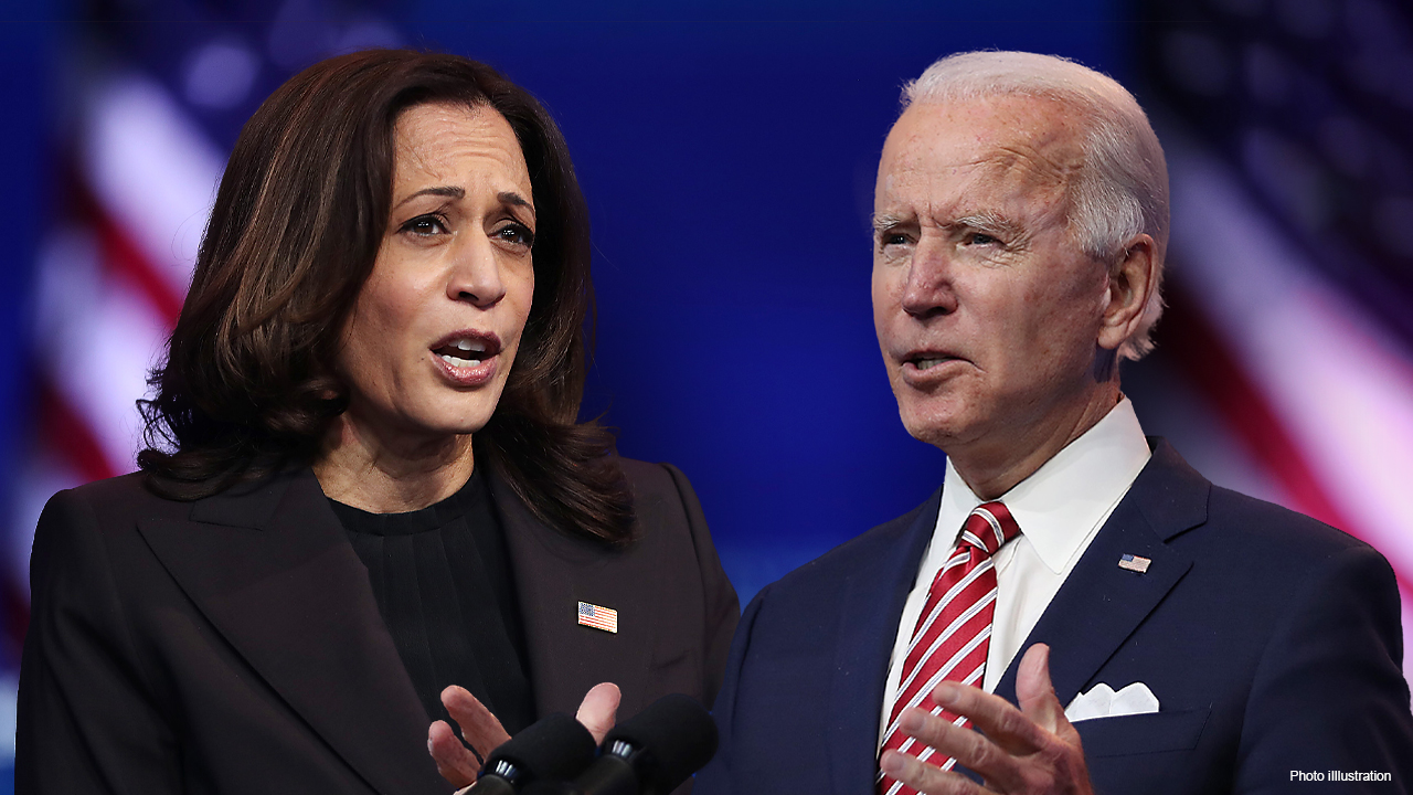 Biden should pull off executive order 'blitz' before people can react, leftists say