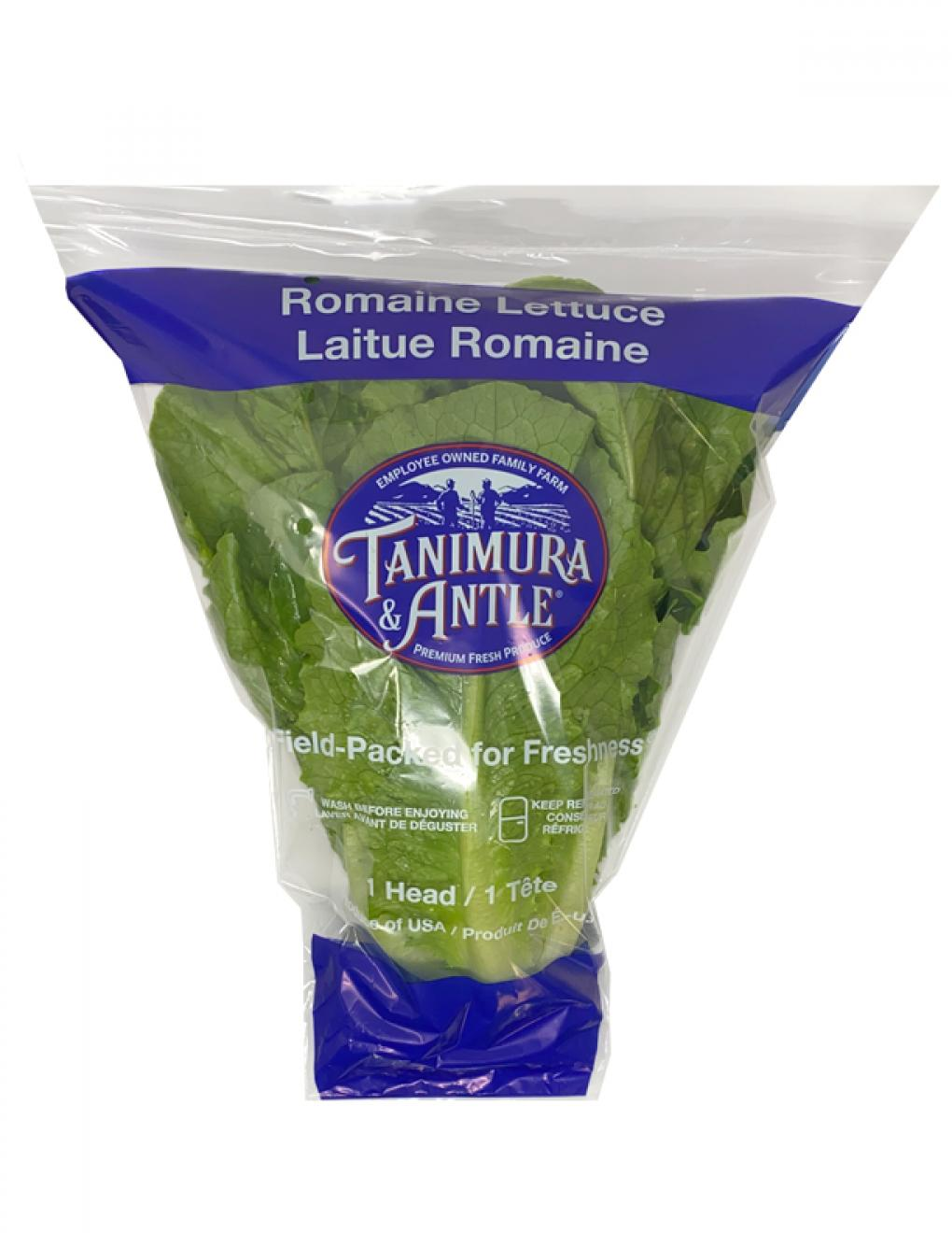 tanimura_lettuce.jpg