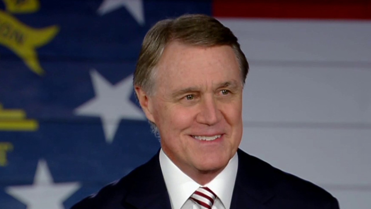 Perdue fronts positive outlook on Georgia Senate runoffs: Voters see 'value of split government'