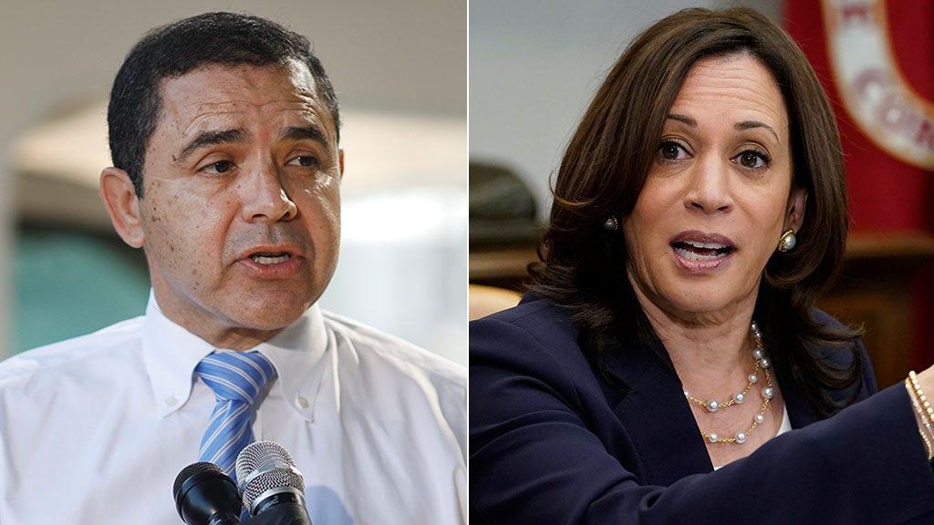 Democratic Rep. Cuellar urges Kamala Harris to visit border amid immigration crisis
