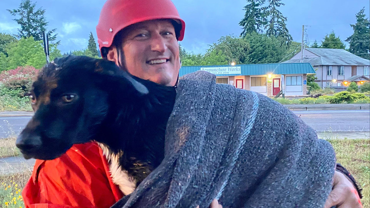 Oregon firefighters rescue injured dog stranded in canal