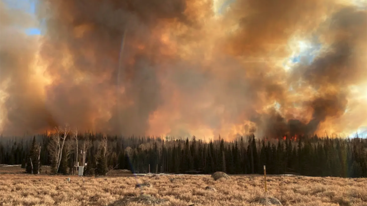 Wildfire smoke exposure linked to COVID-19 case increase: study