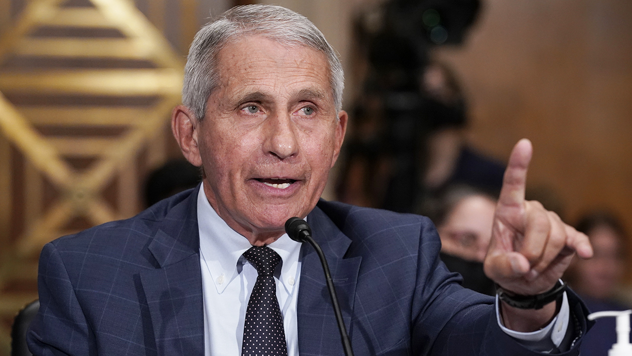 Associated Press ripped after Fauci touts monoclonal antibodies: 'Isn't this the thing Ron DeSantis promoted?'