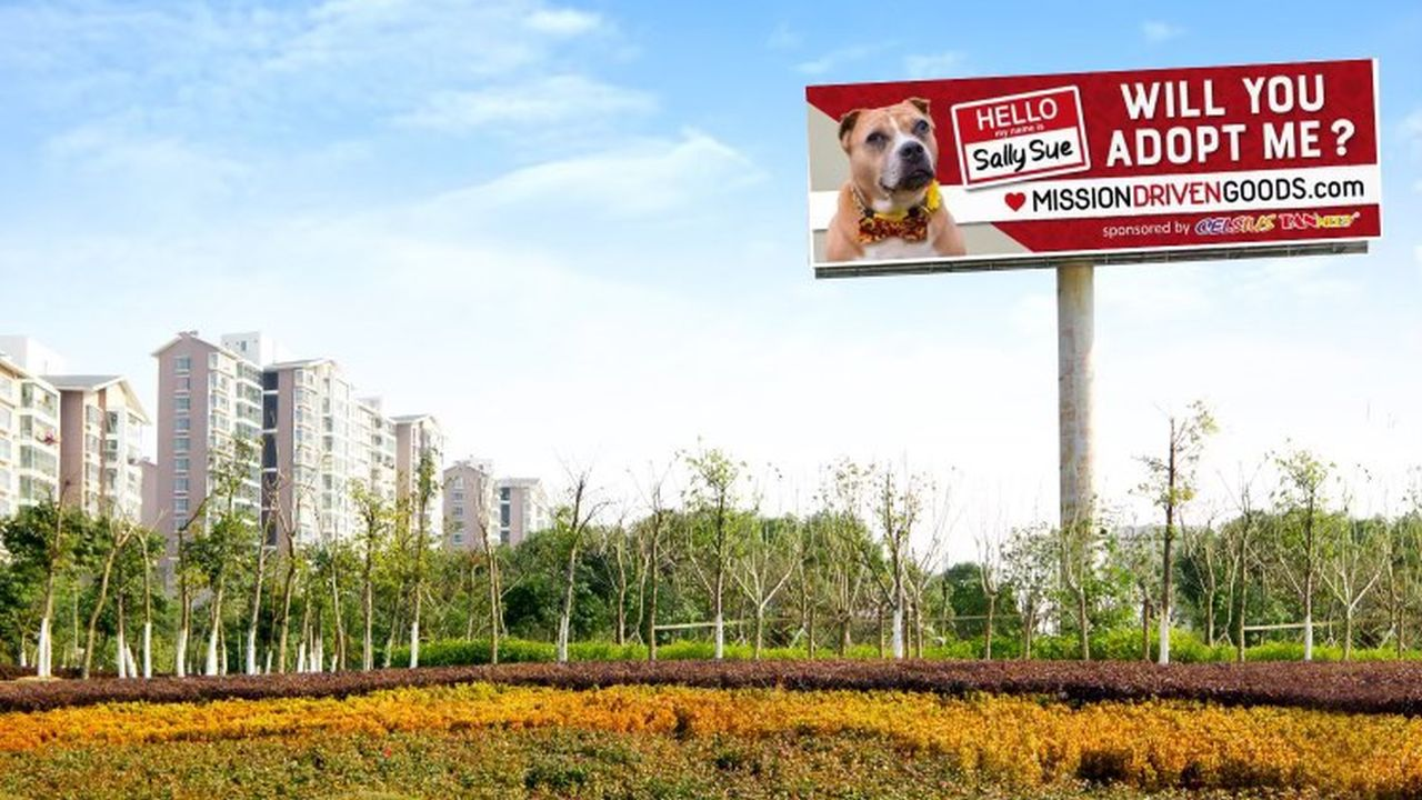 Billboard advertises elderly dog who's been in shelter for 2 years