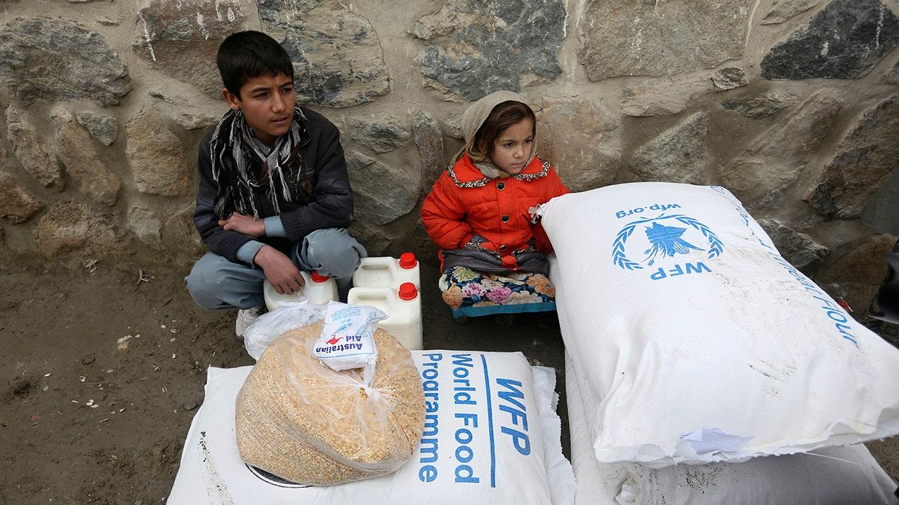 Afghanistan on verge of humanitarian 'catastrophe,' World Food Programme warns