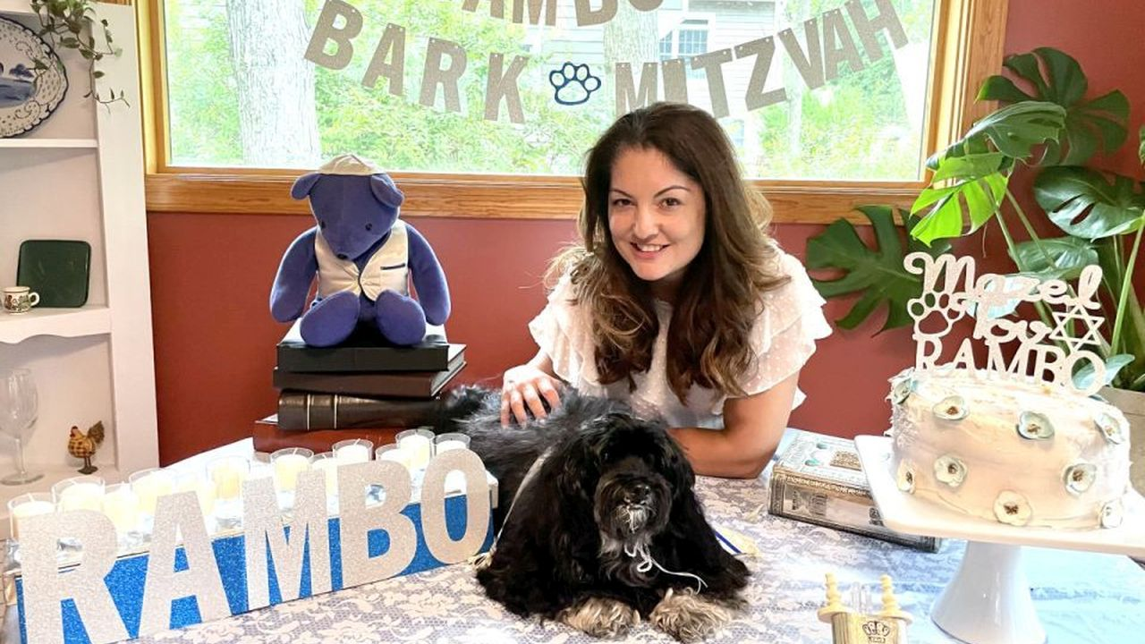 13-year-old dog has 'Bark Mitzvah' with full coming-of-age ceremony