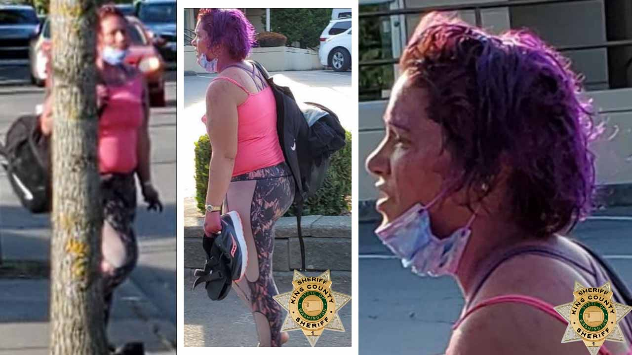 Seattle detectives hunt woman who tried to snatch 2-year-old boy from pregnant mother at park