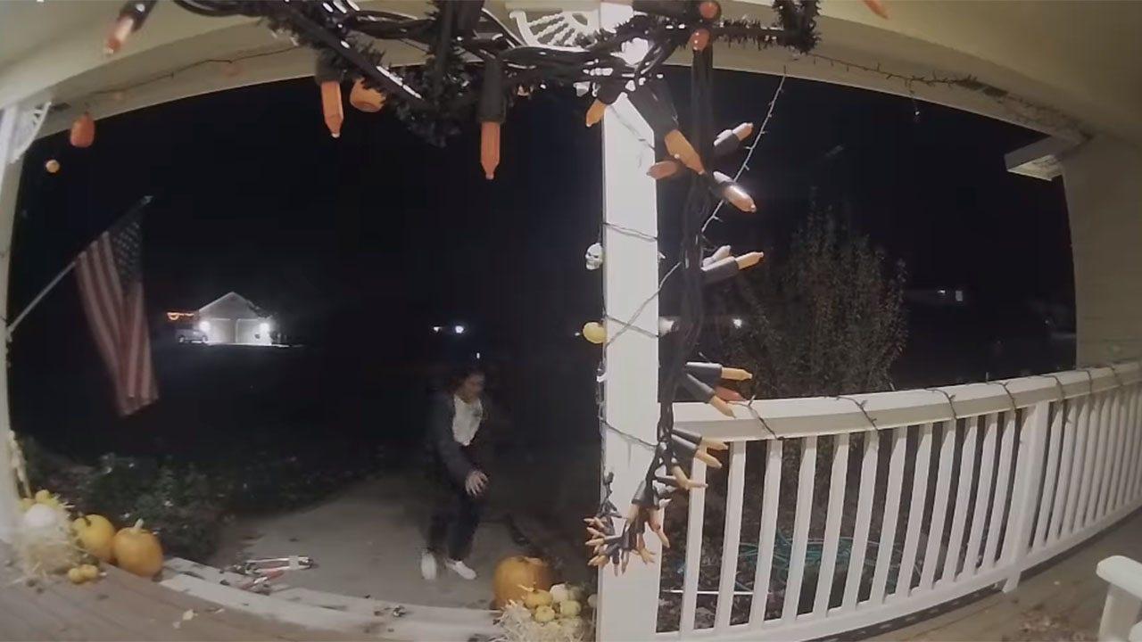 Pumpkin thief caught on video in Washington