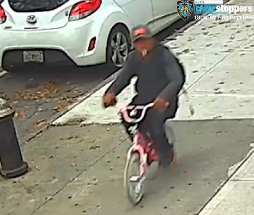 NYC thief on pink bicycle with butterflies robs girl, 10, for cell phone, police say