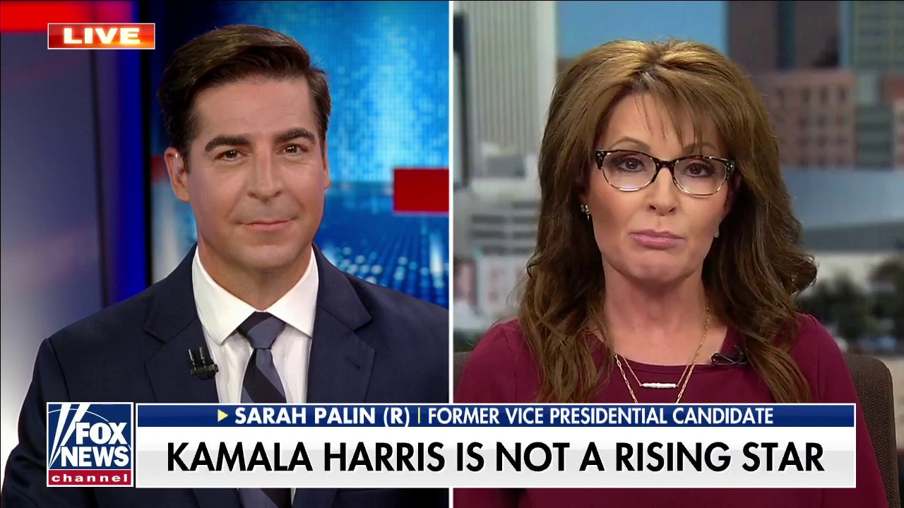 Palin: Biden is a being subjected to 'elder abuse'