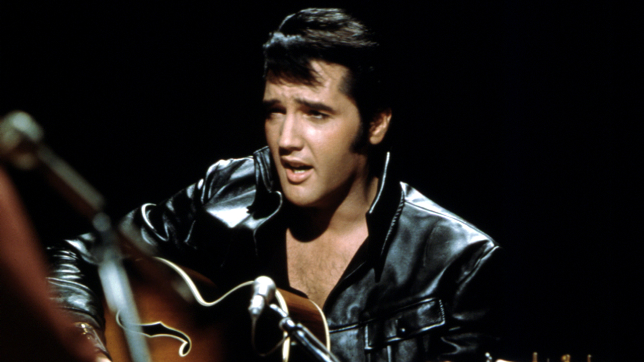 Elvis Presley bust stolen from bar