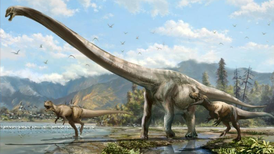 New species of long-necked 'dragon' dinosaur discovered in China