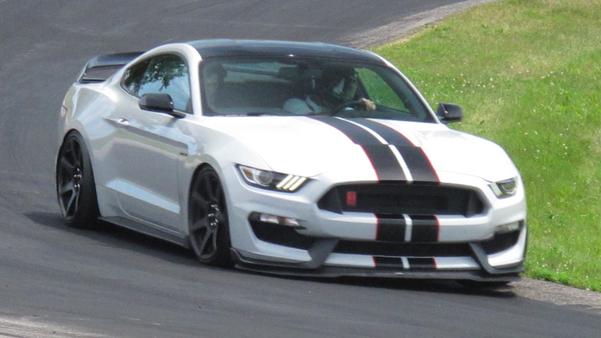mustang-shelby-track-876.jpg