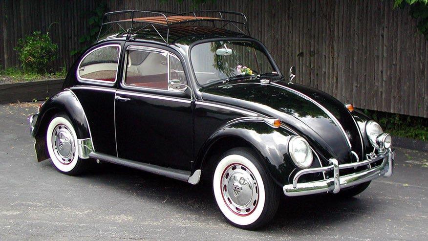 odd-beetle-876.jpg
