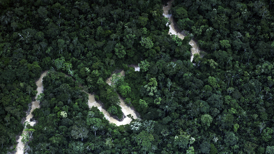 Isolated Amazon tribe makes contact with scientists