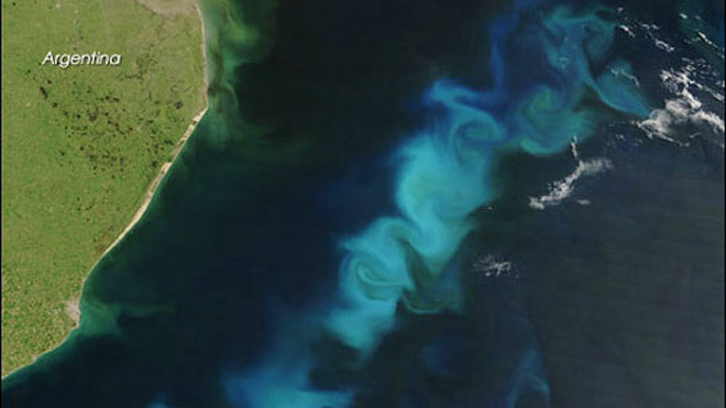 atlantic-ocean-phytoplankton-bloom.jpg