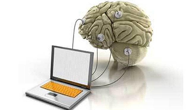 computer and human brain essay