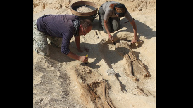 3,300-year-old Egyptian cemetery revealed