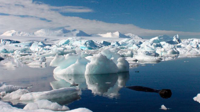 LOL: Greenpeace co-founder: No scientific proof humans are dominant cause of warming climate Icebergs_antartica2