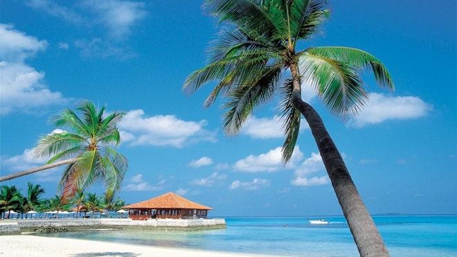 caribbean_beach.jpg
