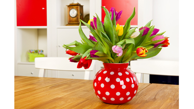 5 Things you can do to bring spring into your house