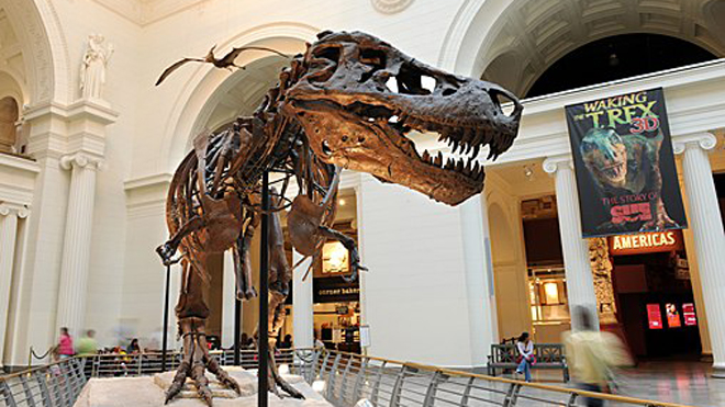 kids-who-love-dinosaurs-field-museum-chicago.jpg
